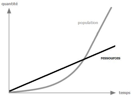 théorie néoclassique économie